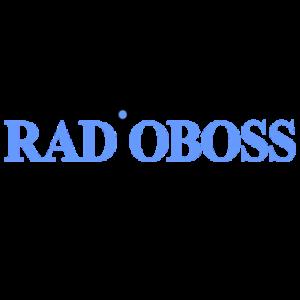 RadioBoss Belt Clips
